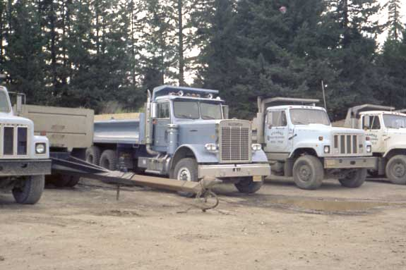 Some of Stearns Rock Crushing's dump truck fleet