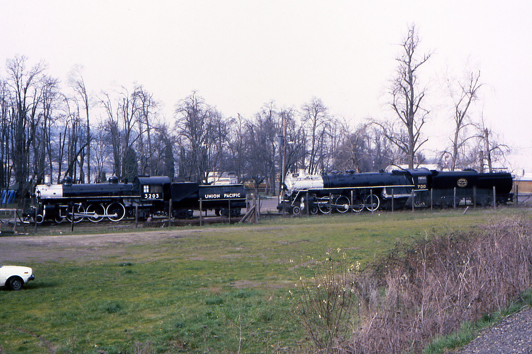 Between the PTC tracks and Oaks Park, Union Pacific 3203 and SP&S 700 were stored on display at the Oaks in August, 1981.